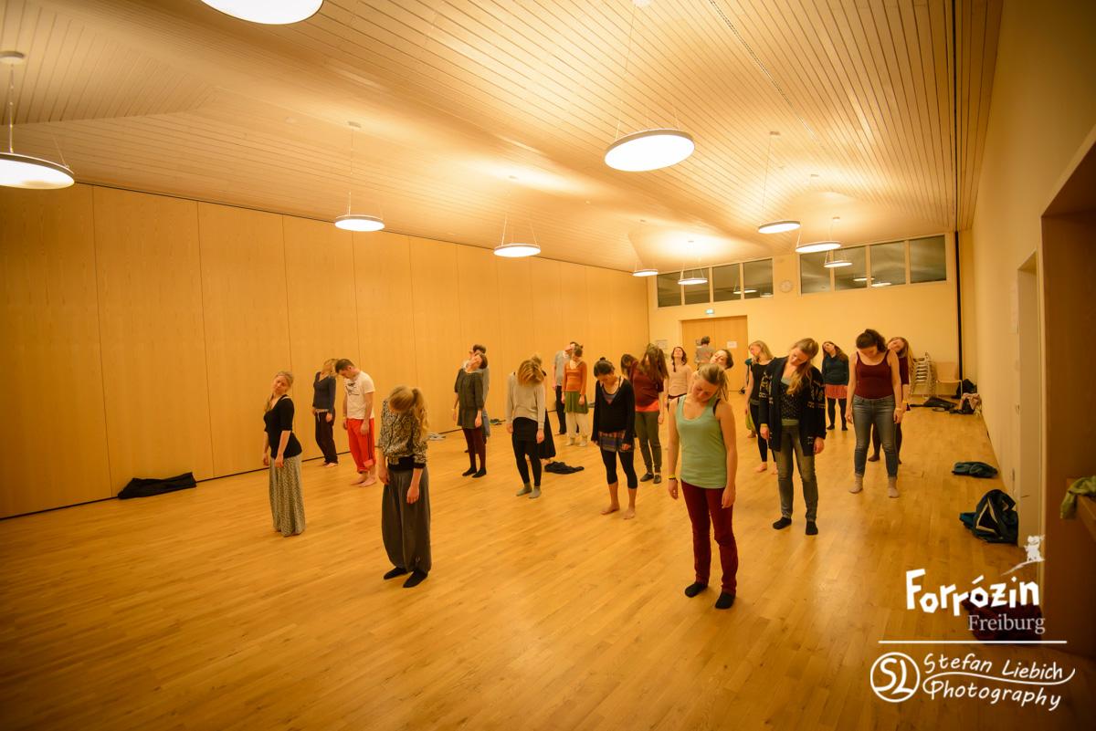 slp-forro-festival-freiburg-2015-saturday-workshops-all-165