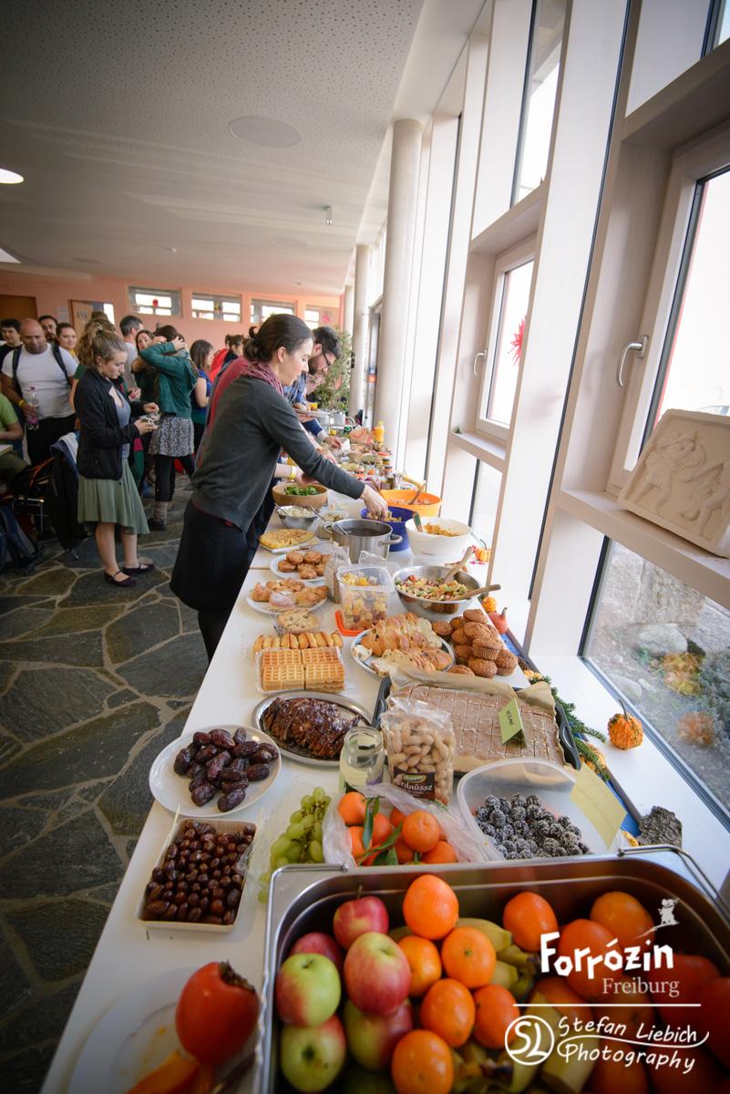 slp-forro-festival-freiburg-2015-saturday-workshops-preview-15