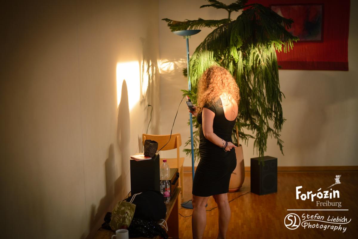 slp-forro-festival-freiburg-2015-saturday-workshops-preview-20
