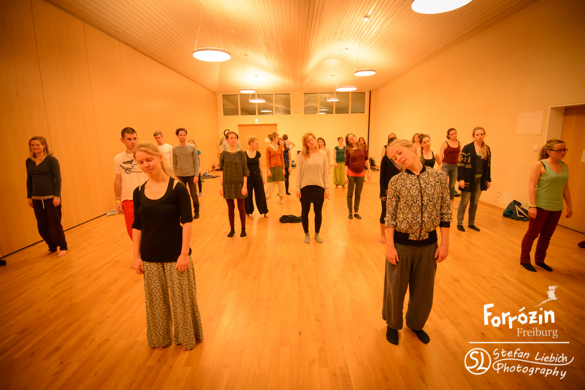 slp-forro-festival-freiburg-2015-saturday-workshops-preview-31