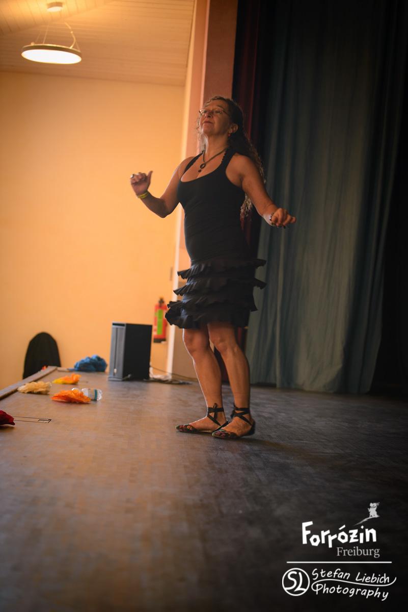slp-forro-festival-freiburg-2015-sunday-workshops-all-7
